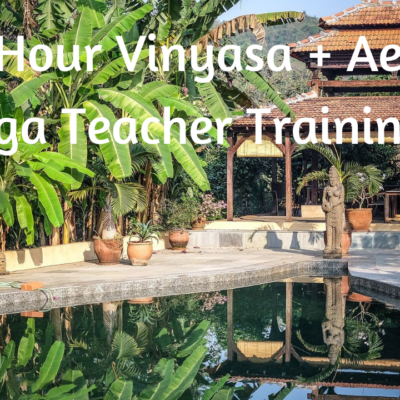 vinyasa aerial yoga teacher training goa india lindsay nova