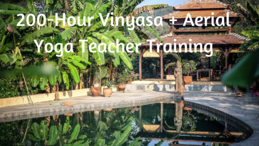 vinyasa aerial yoga teacher training goa india lindsay nova