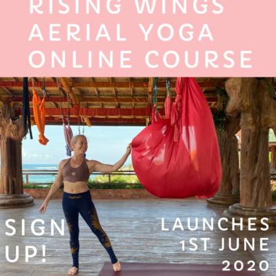 aerial yoga online aerial yoga training aerial yoga teacher training thailand lindsay nova rising wings