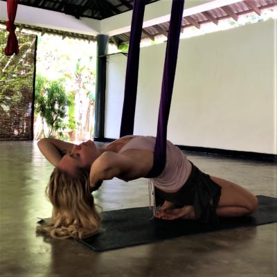 rising wings restorative aerial yoga manual for sale lindsay nova