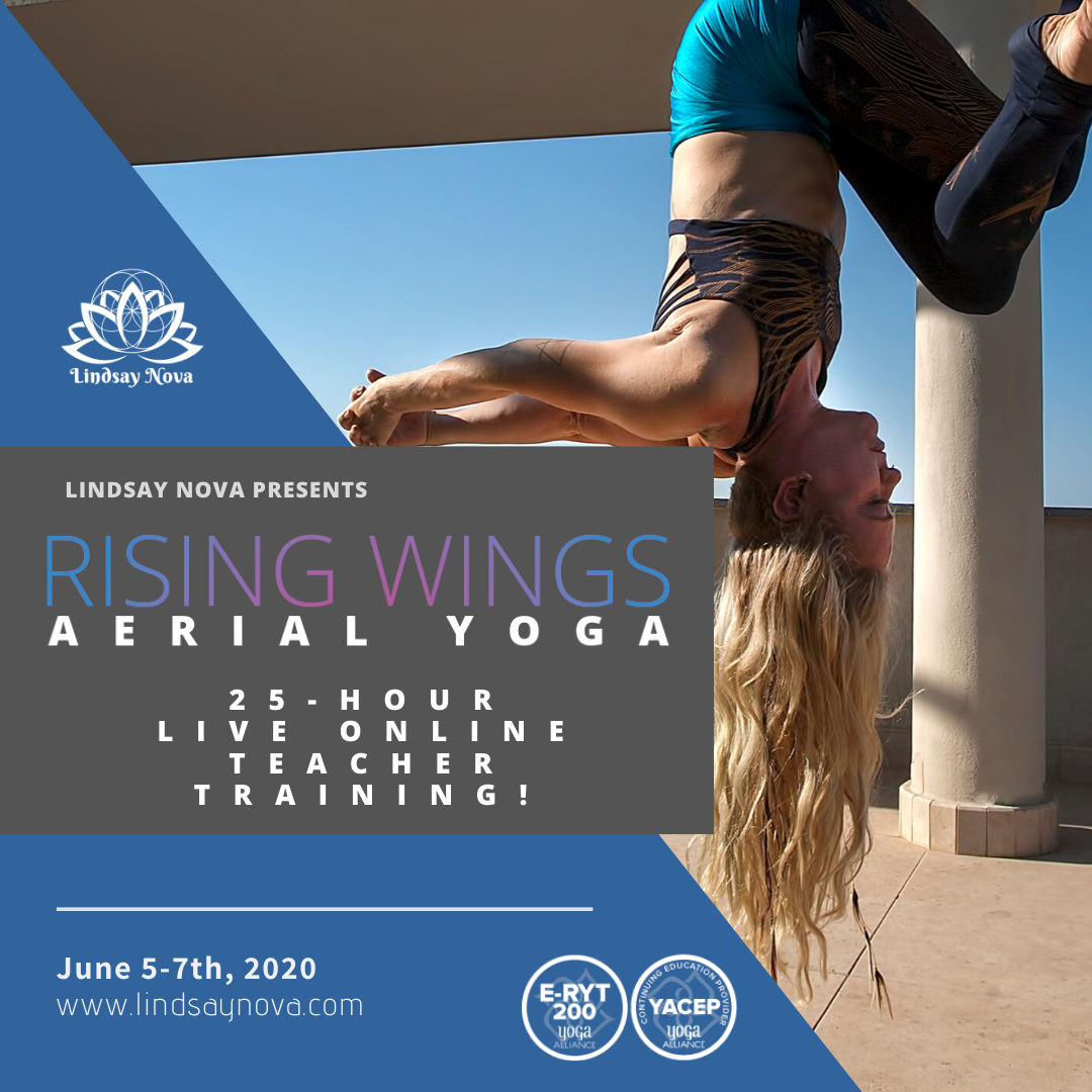 25 Hour Rising Wings Aerial Yoga Online Teacher Training August 2020 Rising Wings Aerial Yoga Teacher Training W Lindsay Nova Online Vinyasa Yin Yoga Alliance